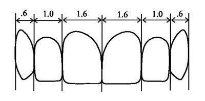 نسبت طلایی دندانها